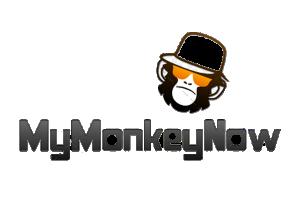 www.mymonkeynow.com